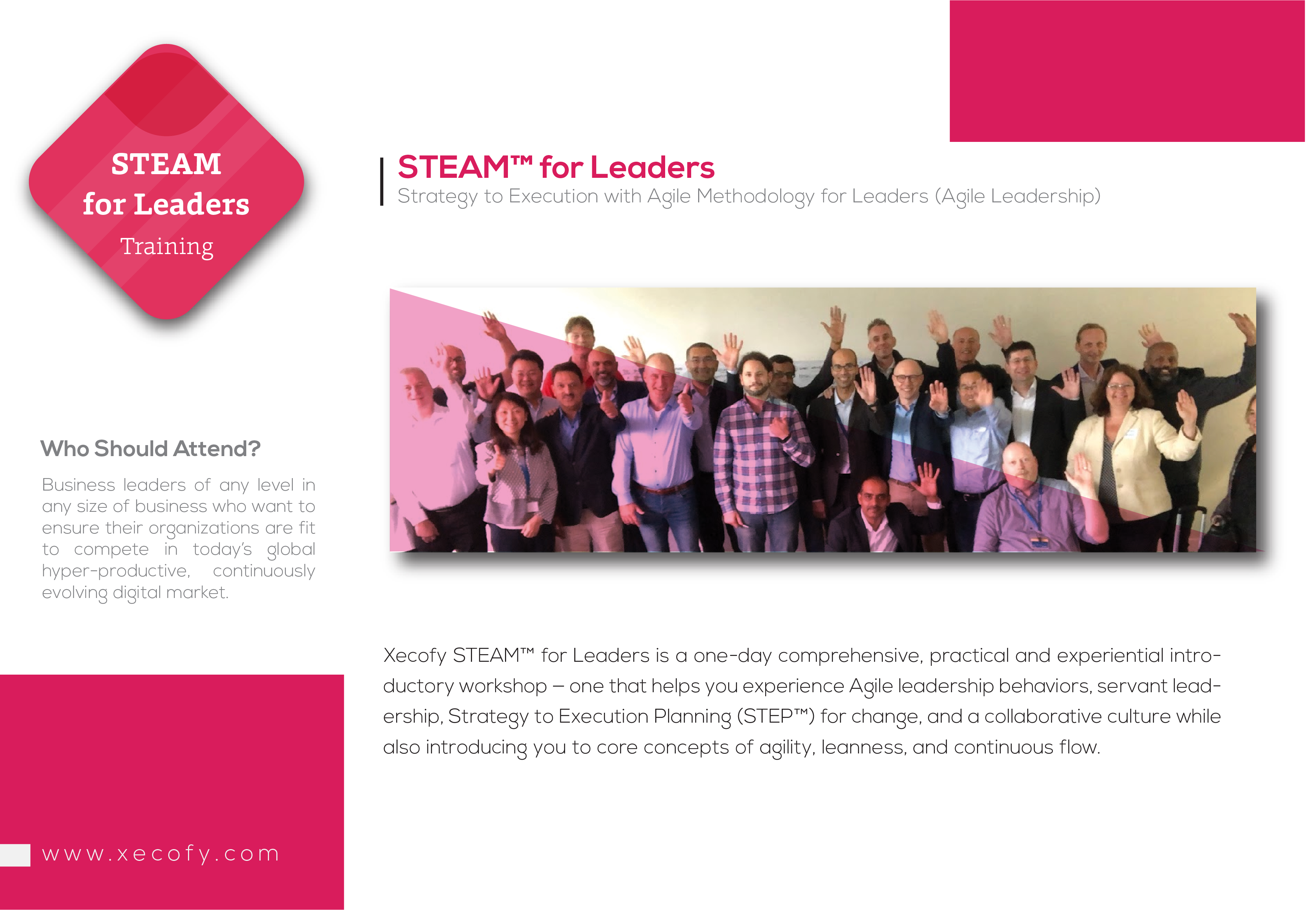 STEAM™ for Leaders (Agile Leadership) – Xecofy